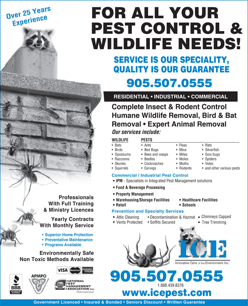 ICE Pest Control & Wildlife (905-507-0555) - Annonce illustrée======= - FOR ALL YOUR Over 25 Years Experience PEST CONTROL & SERVICE IS OUR SPECIALITY, QUALITY IS OUR GUARANTEE 905.507.0555 RESIDENTIAL   INDUSTRIAL   COMMERCIAL Complete Insect & Rodent Control Humane Wildlife Removal, Bird & Bat Removal   Expert Animal Removal Our services include: WILDLIFE PESTS Bats WILDLIFE NEEDS! Ants Fleas Rats Birds Bed Bugs Mice Silverfish Opossums Bees and wasps Mites Sow bugs Raccoons Beetles Moles Spiders Skunks Cockroaches Moths Voles Squirrels Earwigs Rodents and other various pests Commercial / Industrial Pest Control IPM - Specialists in Integrated Pest Management solutions Food & Beverage Processing Property Management Professionals Warehousing/Storage Facilities Healthcare Facilities With Full Training Retail Schools & Ministry Licences Prevention and Specialty Services Chimneys Capped Attic Cleaning Decontamination & Hazmat Yearly Contracts Vents Protected Soffits Secured Tree Trimming With Monthly Service Superior Home Protection Preventative Maintenance Programs Available Environmentally Safe Non Toxic Methods Available 905.507.0555 1.888.439.8376 www.icepest.com Government Licenced   Insured & Bonded   Seniors Discount   Written Guarantee