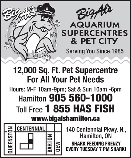 Big Al's (905-560-1000) - Display Ad - Serving You Since 1985 12,000 Sq. Ft. Pet Supercentre For All Your Pet Needs Hours: M-F 10am-9pm; Sat & Sun 10am -6pm Hamilton 905 560-1000 Toll Free 1 855 HAS FISH www.bigalshamilton.ca 140 Centennial Pkwy. N., Hamilton, ON SHARK FEEDING FRENZY EVERY TUESDAY 7 PM SHARK!  Serving You Since 1985 12,000 Sq. Ft. Pet Supercentre For All Your Pet Needs Hours: M-F 10am-9pm; Sat & Sun 10am -6pm Hamilton 905 560-1000 Toll Free 1 855 HAS FISH www.bigalshamilton.ca 140 Centennial Pkwy. N., Hamilton, ON SHARK FEEDING FRENZY EVERY TUESDAY 7 PM SHARK!  Serving You Since 1985 12,000 Sq. Ft. Pet Supercentre For All Your Pet Needs Hours: M-F 10am-9pm; Sat & Sun 10am -6pm Hamilton 905 560-1000 Toll Free 1 855 HAS FISH www.bigalshamilton.ca 140 Centennial Pkwy. N., Hamilton, ON SHARK FEEDING FRENZY EVERY TUESDAY 7 PM SHARK!