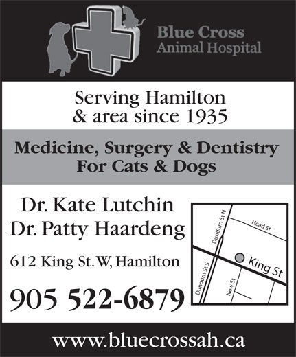 Blue Cross Animal Hospital Professional (905-522-6879) - Display Ad - Dr. Kate Lutchin Dr. Patty Haardeng King St Dundurn St SDundurn St NNew St Head S 612 King St. W, Hamilton 905 522-6879 www.bluecrossah.ca For Cats & Dogs Serving Hamilton & area since 1935 Medicine, Surgery & Dentistry Serving Hamilton & area since 1935 Medicine, Surgery & Dentistry For Cats & Dogs Dr. Kate Lutchin Dr. Patty Haardeng King St Dundurn St SDundurn St NNew St Head S 612 King St. W, Hamilton 905 522-6879 www.bluecrossah.ca