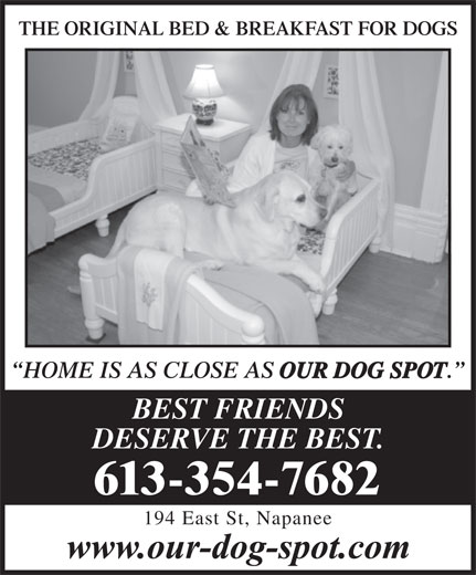 Our Dog Spot (613-354-7682) - Display Ad - THE ORIGINAL BED & BREAKFAST FOR DOGSORIGINAL BED & BREAKFAST FOR DOGS HOME IS AS CLOSE AS OUR DOG SPOT BEST FRIENDS DESERVE THE BEST. 613-354-7682 194 East St, Napanee