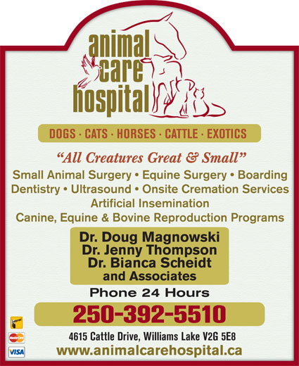 Animal Care Hospital Of Williams Lake (250-392-5510) - Display Ad - Small Animal Surgery   Equine Surgery   Boarding Dentistry   Ultrasound   Onsite Cremation Services Artificial Insemination Canine, Equine & Bovine Reproduction Programs Dr. Doug MagnowskiDr. Doug Magnowski Dr. Jenny ThompsonDr. Jenny Thompson Dr. Bianca ScheidtDr. Bianca Scheidt and Associatesand Associates Phone 24 HoursPhone 24 Hours 250-392-5510 4615 Cattle Drive, Williams Lake V2G 5E84615 Cattle Drive, Williams Lake V2G 5E8 www.animalcarehospital.cawww.animalcarehospital.ca DOGS · CATS · HORSES · CATTLE · EXOTICS DOGS · CATS · HORSES · CATTLE · EXOTICS All Creatures Great & Small