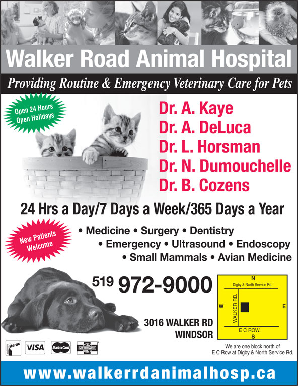Walker Road Animal Hospital (519-972-9000) - Display Ad - Walker Road Animal Hospital Providing Routine & Emergency Veterinary Care for Pets Dr. A. Kaye Open 24 Hours Open Holidays New Patients Dr. A. DeLuca Dr. L. Horsman Dr. N. Dumouchelle Dr. B. Cozens 24 Hrs a Day/7 Days a Week/365 Days a Year Medicine   Surgery   Dentistry Emergency   Ultrasound   Endoscopy Welcome Small Mammals   Avian Medicine Digby & North Service Rd. 519 972-9000 E W ALKER R 3016 WALKER RD E C ROW. WINDSOR We are one block north of E C Row at Digby & North Service Rd. www.walkerrdanimalhosp.ca