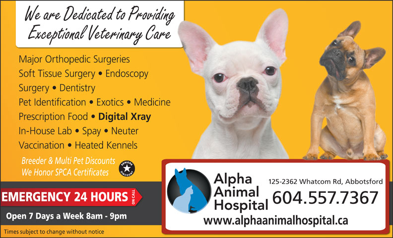 Alpha Animal Hospital (604-859-6322) - Display Ad - Vaccination   Heated Kennels Breeder & Multi Pet Discounts We Honor SPCA Certificates 125-2362 Whatcom Rd, Abbotsford 604.557.7367 ON CALL Open 7 Days a Week 8am - 9pm www.alphaanimalhospital.ca Times subject to change without notice EMERGENCY 24 HOURS We are Dedicated to Providing Exceptional Veterinary Care Major Orthopedic Surgeries Soft Tissue Surgery   Endoscopy Surgery   Dentistry Pet Identification   Exotics   Medicine Prescription Food Digital Xray In-House Lab   Spay   Neuter