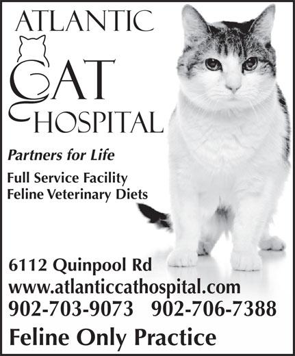 Atlantic Cat Hospital (902-423-7877) - Display Ad - Partners for Life Full Service Facility Feline Veterinary Diets 6112 Quinpool Rd www.atlanticcathospital.com 902-703-9073   902-706-7388 Feline Only Practice