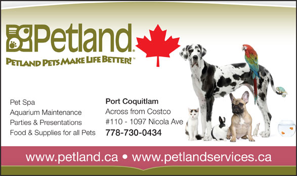 Petland (604-464-9770) - Annonce illustrée======= - Port Coquitlam Pet Spa Across from Costco Aquarium Maintenance #110 - 1097 Nicola Ave Parties & Presentations Food & Supplies for all Pets 778-730-0434 www.petland.ca   www.petlandservices.ca