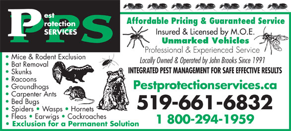 AAA Pest Protection Services (519-661-6832) - Display Ad - Affordable Pricing & Guaranteed Service Insured & Licensed by M.O.E. Unmarked Vehicles Professional & Experienced Service Mice & Rodent Exclusion Locally Owned & Operated by John Brooks Since 1991 Bat Removal INTEGRATED PEST MANAGEMENT FOR SAFE EFFECTIVE RESULTS Skunks Racoons Groundhogs Pestprotectionservices.ca Carpenter Ants Bed Bugs 519-661-6832 Spiders   Wasps   Hornets Fleas   Earwigs   Cockroaches 1 800-294-1959 Exclusion for a Permanent Solution