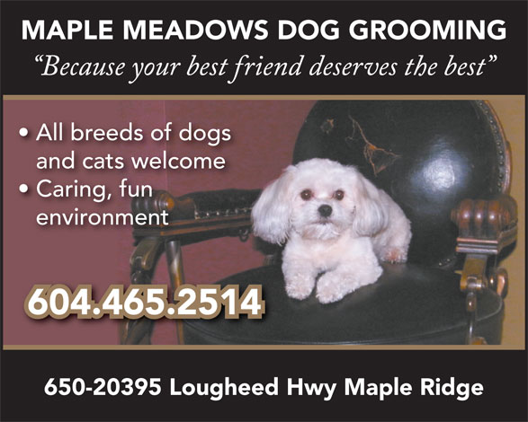 Maple Meadows Dog Grooming (604-465-7600) - Annonce illustrée======= -
