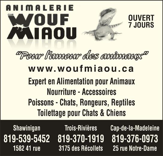 Animalerie Club Wouf Miaou Shawinigan (819-539-5452) - Annonce illustrée======= - CLUB OUVERT 7 JOURS Pour l amour des animaux www.woufmiaou.ca Expert en Alimentation pour Animaux Nourriture - Accessoires Poissons - Chats, Rongeurs, Reptiles Toilettage pour Chats & Chiens Trois-RivièresShawinigan Cap-de-la-Madeleine 819-370-1919819-539-5452 819-376-0973 3175 des Récollets1582 41 rue 25 rue Notre-Dame OUVERT 7 JOURS Pour l amour des animaux www.woufmiaou.ca Expert en Alimentation pour Animaux Nourriture - Accessoires Poissons - Chats, Rongeurs, Reptiles Toilettage pour Chats & Chiens Trois-RivièresShawinigan Cap-de-la-Madeleine 819-370-1919819-539-5452 819-376-0973 3175 des Récollets1582 41 rue 25 rue Notre-Dame CLUB
