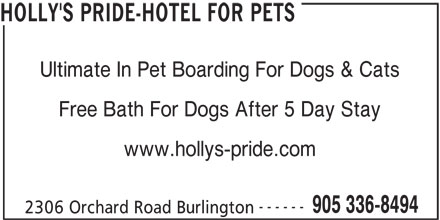 Holly's Pride-Hotel For Pets (905-336-8494) - Display Ad - HOLLY'S PRIDE-HOTEL FOR PETS Ultimate In Pet Boarding For Dogs & Cats Free Bath For Dogs After 5 Day Stay www.hollys-pride.com ------ 905 336-8494 2306 Orchard Road Burlington
