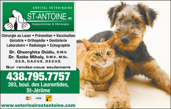 Hôpital Vétérinaire St Antoine Inc (450-565-5665) - Annonce illustrée======= - Chirurgie au Laser   Prévention   Vaccination Laboratoire   Radiologie   Echographie D.M.V. Dr. Gheorghita Ovidiu, D.M.V., M.Sc, Dr. Szöke Mihaly, D.E.S., D.A.C.V.S., D.E.C.V.S. Sur rendez-vous seulement 438.795.7757 393, boul. des Laurentides, St-Jérôme www.veterinairestantoine.com Gériatrie   Orthopédie   Dentisterie