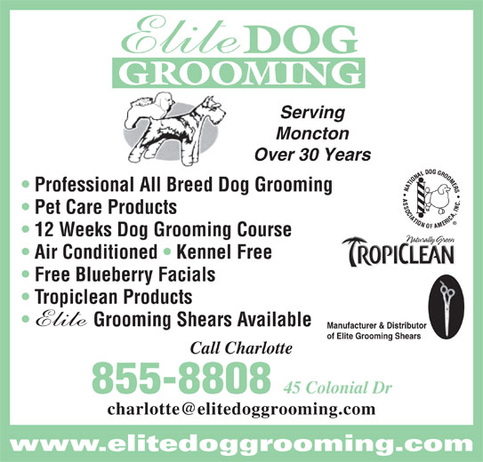 Elite Dog Grooming (506-855-8808) - Display Ad - DOG GROOMING Serving Moncton Over 30 Years Professional All Breed Dog Grooming Pet Care Products 12 Weeks Dog Grooming Course Air Conditioned   Kennel Free Free Blueberry Facials Tropiclean Products Grooming Shears Available Manufacturer & Distributor of Elite Grooming Shears Call Charlotte 855-8808 45 Colonial Dr www.elitedoggrooming.com