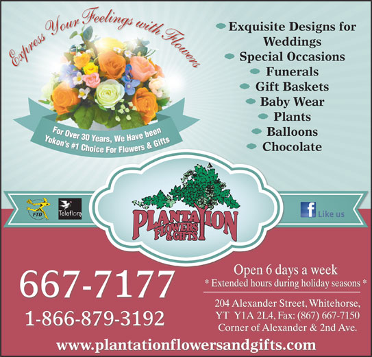 Plantation Flowers & Gifts (867-667-7177) - Display Ad - ice For Fl Express Your Feelings with Flowers Funerals Gift Baskets Baby Wear Plants For Over 30 Years, We Have been Yukon s #1 Choice For Flowers & Gifts For Ovbeen For Over30 Ye Y Balloons Yars,We Havebeen Yukon n s s# Gifts #1 1 C &G Ch s& rs hoi Chocolate er Open 6 days a week * Extended hours during holiday seasons * 667-7177 204 Alexander Street, Whitehorse, YT  Y1A 2L4, Fax: (867) 667-7150 1-866-879-3192 Corner of Alexander & 2nd Ave. www.plantationflowersandgifts.com lowe Exquisite Designs for Weddings Special Occasions