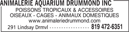 Animalerie Aquarium Drummond (819-472-6351) - Annonce illustrée======= - ANIMALERIE AQUARIUM DRUMMOND INC POISSONS TROPICAUX & ACCESSOIRES OISEAUX - CAGES - ANIMAUX DOMESTIQUES www.animaleriedrummond.com 819 472-6351 291 Lindsay Drmvl-----------------