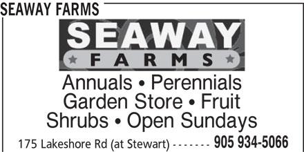 Seaway Farms (905-934-5066) - Display Ad - Shrubs  Open Sundays 905 934-5066 175 Lakeshore Rd (at Stewart) ------- SEAWAY FARMS Annuals  Perennials Garden Store  Fruit