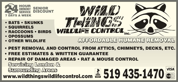 Wild Things Wildlife Control Inc. (519-435-1470) - Display Ad - SQUIRRELS  SQUIRRELS RACCOONS   BIRDS  RACCOONS   BIRDS inc. OPOSSUMS  OPOSSUMS AFFORDABLE HUMANE REMOVALAFFORDABLE HUMANE REMOVAL OTHER WILDLIFE  OTHER WILDLIFE AFFORDABLE HUMANE REMOVALAFFORDABLE HUMANE REMOVAL PEST REMOVAL AND CONTROL FROM ATTICS, CHIMNEYS, DECKS, ETC.  PEST REMOVAND CONTROL FROM ATTICS, CHIMNEYS, DECKS, ETC. FREE ESTIMATES & WRITTEN GUARANTEE  FREE ESTIMATES & WRITTEN GUARANTEE REPAIR OF DAMAGED AREAS   RAT & MOUSE CONTROL  REPAIR OF DAMAGED AREAS   RAT & MOUSE CONTROL Servicing London &n &ing LondoServic www.wildthingswildlifecontrol.comwww.wildthingswildlifeco 519 435-1470 BATS   SKUNKS  BATS   SKUNKS SQUIRRELS  SQUIRRELS RACCOONS   BIRDS  RACCOONS   BIRDS inc. OPOSSUMS  OPOSSUMS AFFORDABLE HUMANE REMOVALAFFORDABLE HUMANE REMOVAL OTHER WILDLIFE  OTHER WILDLIFE AFFORDABLE HUMANE REMOVALAFFORDABLE HUMANE REMOVAL PEST REMOVAL AND CONTROL FROM ATTICS, CHIMNEYS, DECKS, ETC.  PEST REMOVAND CONTROL FROM ATTICS, CHIMNEYS, DECKS, ETC. FREE ESTIMATES & WRITTEN GUARANTEE  FREE ESTIMATES & WRITTEN GUARANTEE REPAIR OF DAMAGED AREAS   RAT & MOUSE CONTROL  REPAIR OF DAMAGED AREAS   RAT & MOUSE CONTROL Servicing London &n &ing LondoServic www.wildthingswildlifecontrol.comwww.wildthingswildlifeco 519 435-1470 BATS   SKUNKS  BATS   SKUNKS
