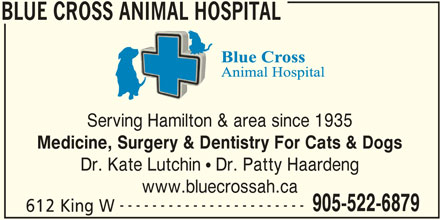 Blue Cross Animal Hospital (905-522-6879) - Display Ad - Dr. Kate Lutchin ! Dr. Patty Haardeng www.bluecrossah.ca ----------------------- 905-522-6879 612 King W BLUE CROSS ANIMAL HOSPITAL BLUE CROSS ANIMAL HOSPITAL Serving Hamilton & area since 1935 Medicine, Surgery & Dentistry For Cats & Dogs