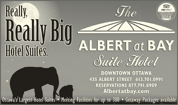 Albert At Bay Suite Hotel (613-238-8858) - Display Ad - RallBig 435 ALBERT STREET  613.701.0991435 ALBERT STREET  613.701.0991 RESERVATIONS 877.791.8909RESERVATIONS 877.791.8909 Albertatbay.comAlbertatbay.com Ottawa s Largest Hotel Suites   Meeting Facilities for up to 300   Getaway Packages availableOttawa s Largest Hotel Suites   Meeting Facilities for up to 300   Getaway Packages available DOWNTOWN OTTAWADOWNTOWN OTTAWA