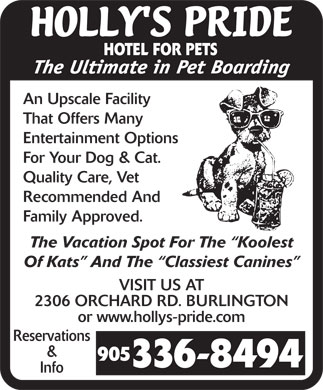Holly's Pride-Hotel For Pets (905-336-8494) - Display Ad - HOTEL FOR PETS An Upscale Facility That Offers Many Entertainment Options For Your Dog & Cat. Quality Care, Vet Recommended And Family Approved. The Vacation Spot For The  Koolest Of Kats  And The  Classiest Canines VISIT US AT 2306 ORCHARD RD. BURLINGTON or www.hollys-pride.com Reservations & Info