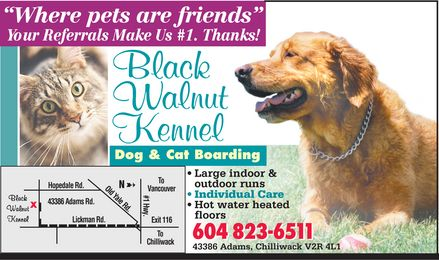 Black Walnut Kennel (604-823-6511) - Annonce illustrée