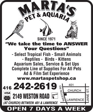 Marta's Pet & Aquaria (416-242-2619) - Display Ad - - Reptiles -  Birds - Kittens Aquarium Sales, Service & Set Ups Complete Line of Supplies For All Pets Ad & Film Set Experience www.martaspetshop.ca 2149 WESTON ROAD SINCE 1971 - Select Tropical Fish - Small Animals