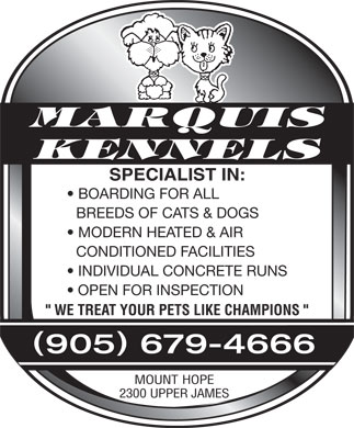 "Marquis Kennels (905-679-4666) - Display Ad - MARQUIS KENNELS SPECIALIST IN: BOARDING FOR ALL BREEDS OF CATS & DOGS MODERN HEATED & AIR CONDITIONED FACILITIES INDIVIDUAL CONCRETE RUNS OPEN FOR INSPECTION "" WE TREAT YOUR PETS LIKE CHAMPIONS "" () 905 679-4666 MOUNT HOPE 2300 UPPER JAMES MARQUIS KENNELS SPECIALIST IN: BOARDING FOR ALL BREEDS OF CATS & DOGS MODERN HEATED & AIR CONDITIONED FACILITIES INDIVIDUAL CONCRETE RUNS OPEN FOR INSPECTION "" WE TREAT YOUR PETS LIKE CHAMPIONS "" () 905 679-4666 MOUNT HOPE 2300 UPPER JAMES  MARQUIS KENNELS SPECIALIST IN: BOARDING FOR ALL BREEDS OF CATS & DOGS MODERN HEATED & AIR CONDITIONED FACILITIES INDIVIDUAL CONCRETE RUNS OPEN FOR INSPECTION "" WE TREAT YOUR PETS LIKE CHAMPIONS "" () 905 679-4666 MOUNT HOPE 2300 UPPER JAMES  MARQUIS KENNELS SPECIALIST IN: BOARDING FOR ALL BREEDS OF CATS & DOGS MODERN HEATED & AIR CONDITIONED FACILITIES INDIVIDUAL CONCRETE RUNS OPEN FOR INSPECTION "" WE TREAT YOUR PETS LIKE CHAMPIONS "" () 905 679-4666 MOUNT HOPE 2300 UPPER JAMES  MARQUIS KENNELS SPECIALIST IN: BOARDING FOR ALL BREEDS OF CATS & DOGS MODERN HEATED & AIR CONDITIONED FACILITIES INDIVIDUAL CONCRETE RUNS OPEN FOR INSPECTION "" WE TREAT YOUR PETS LIKE CHAMPIONS "" () 905 679-4666 MOUNT HOPE 2300 UPPER JAMES  MARQUIS KENNELS SPECIALIST IN: BOARDING FOR ALL BREEDS OF CATS & DOGS MODERN HEATED & AIR CONDITIONED FACILITIES INDIVIDUAL CONCRETE RUNS OPEN FOR INSPECTION "" WE TREAT YOUR PETS LIKE CHAMPIONS "" () 905 679-4666 MOUNT HOPE 2300 UPPER JAMES  MARQUIS KENNELS SPECIALIST IN: BOARDING FOR ALL BREEDS OF CATS & DOGS MODERN HEATED & AIR CONDITIONED FACILITIES INDIVIDUAL CONCRETE RUNS OPEN FOR INSPECTION "" WE TREAT YOUR PETS LIKE CHAMPIONS "" () 905 679-4666 MOUNT HOPE 2300 UPPER JAMES"