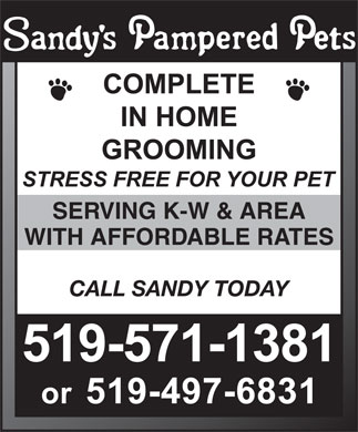 Sandys Pampered Pets (519-571-1381) - Annonce illustrée - SERVING K-W & AREA CALL SANDY TODAY WITH AFFORDABLE RATES