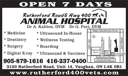 Rutherford 400 Animal Hospital (905-879-1616) - Annonce illustrée