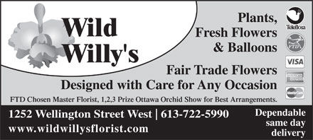 Wild Willy's Plants & Flowers (613-722-5990) - Annonce illustrée - Plants, Wild Fresh Flowers & Balloons Willy's Fair Trade Flowers Designed with Care for Any Occasion FTD Chosen Master Florist, 1,2,3 Prize Ottawa Orchid Show for Best Arrangements. Dependable 1252 Wellington Street West 613-722-5990 same day www.wildwillysflorist.com delivery