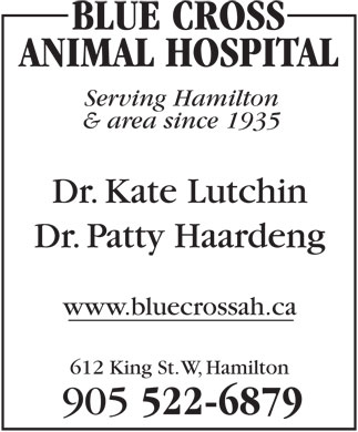 Blue Cross Animal Hospital Professional (905-522-6879) - Display Ad - BLUE CROSS ANIMAL HOSPITAL Serving Hamilton & area since 1935 Dr. Kate Lutchin Dr. Patty Haardeng www.bluecrossah.ca 612 King St. W, Hamilton 905 522-6879