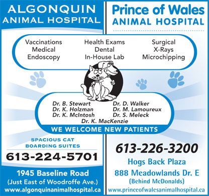 Algonquin Animal Hospital (613-604-0195) - Annonce illustrée