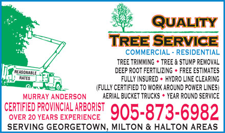 Quality Tree Service (905-873-6982) - Display Ad