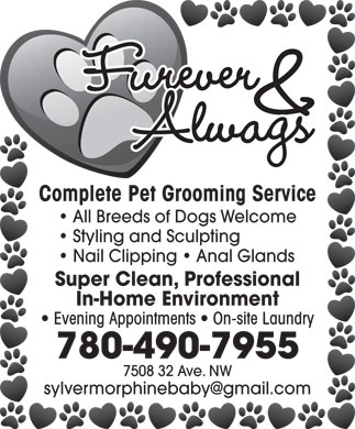 Furever & Alwags (780-490-7955) - Annonce illustrée - Furever & Alwags Complete Pet Grooming Service All Breeds of Dogs Welcome Styling and Sculpting Nail Clipping   Anal Glands Super Clean, Professional In-Home Environment Evening Appointments   On-site Laundry 780-490-7955 7508 32 Ave. NW sylvermorphinebaby@gmail.com
