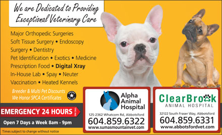 Alpha Animal Hospital (604-859-6322) - Display Ad - We are Dedicated to Providing Exceptional Veterinary Care Major Orthopedic Surgeries Soft Tissue Surgery   Endoscopy Surgery   Dentistry Pet Identification   Exotics   Medicine Prescription Food Digital Xray In-House Lab   Spay   Neuter Vaccination   Heated Kennels Breeder & Multi Pet Discounts We Honor SPCA Certificates EMERGENCY 24 HOURS 32122 South Fraser Way, Abbotsford 125-2362 Whatcom Rd, Abbotsford ON CALL 604.859.6331 Open 7 Days a Week 8am - 9pm 604.859.6322 www.abbotsfordvet.com www.sumasmountainvet.com Times subject to change without notice