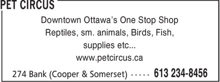 Pet Circus (613-234-8456) - Annonce illustrée - Downtown Ottawa's One Stop Shop Reptiles, sm. animals, Birds, Fish, supplies etc... www.petcircus.ca Downtown Ottawa's One Stop Shop Reptiles, sm. animals, Birds, Fish, supplies etc... www.petcircus.ca