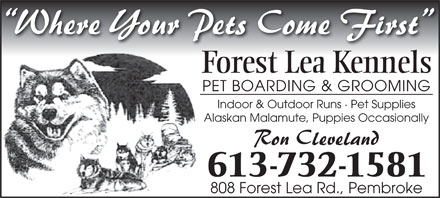 Forest Lea Kennels (613-732-1581) - Annonce illustrée - Forest Lea Kennels PET BOARDING & GROOMING Indoor & Outdoor Runs · Pet Supplies Alaskan Malamute, Puppies Occasionally 613-732-1581 808 Forest Lea Rd., Pembroke